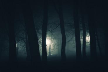 In the Dark Spooky Park
