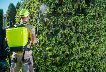 Insecticide Garden Spraying