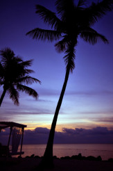 Islamorada Sunrise