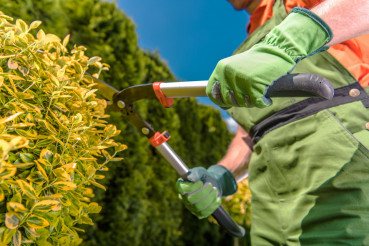 Landscaping Industry Job