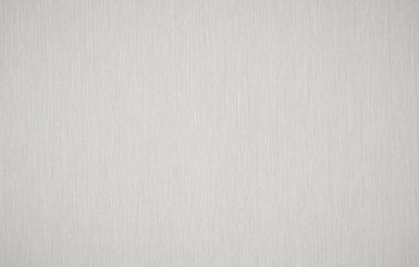 Light Grey Canvas Background