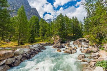 Mountain River Rush