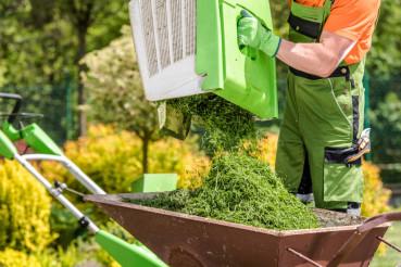 Mowing Backyard Grass