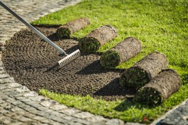 Natural Grass Turf Rolls Installation