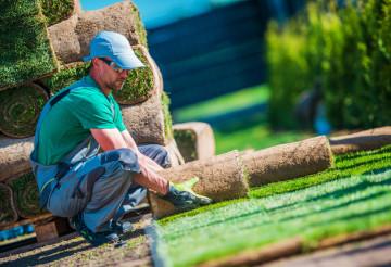 New Turf Grass Installation