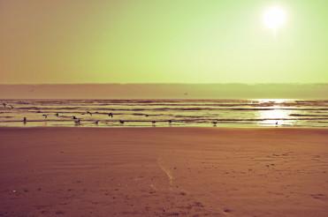 Ocean Beach Vintage Look