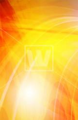 Orange Wavy Vector Backdrop