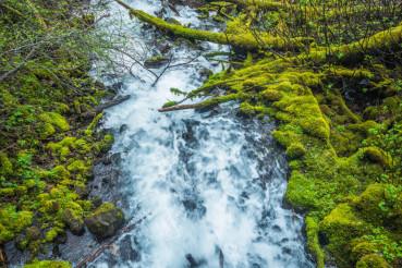 Oregon Mountain River