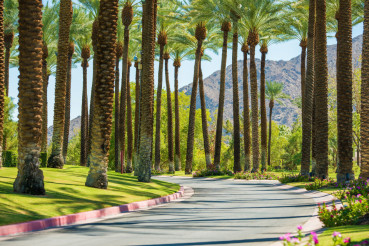 Palm Springs Road
