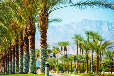 Palms Road Coachella Valley