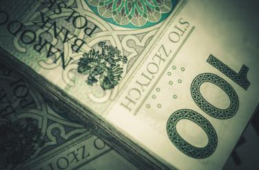 Pile of Cash Polish Zloty