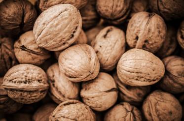 Pile of Organic Walnuts