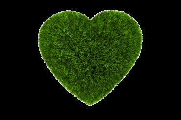 PNG Grass Heart