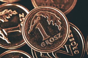 Polish Single Grosz Coin