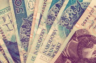 Polish Zloty Money Concept
