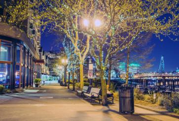 Portland Spring Night