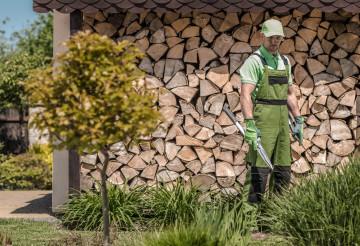 Professional Gardener with Large Garden Scissors Preparing For Plants Trimming