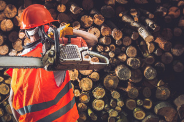Professional Timber Worker