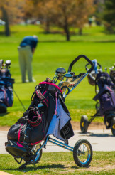 Push-Pull Golf Carts