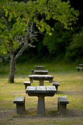 Recreation Site Benches