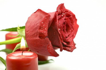 Red Rose & Candles