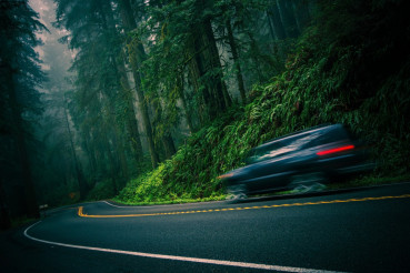 Redwood Highway