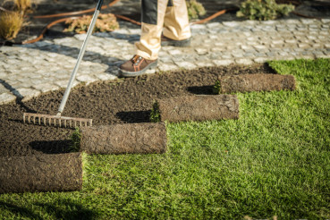 Replacing Natural Grass Turfs