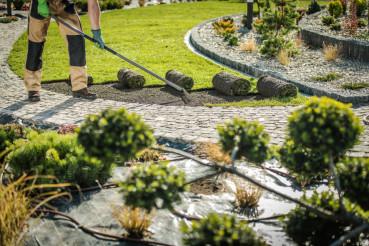 Replacing Natural Grass Turfs