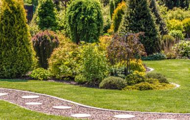 Residential Backyard Garden