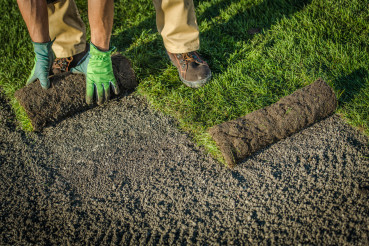 Residential Lawn Grass Installation From Rolls