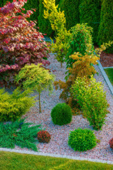 Rockery Garden Design