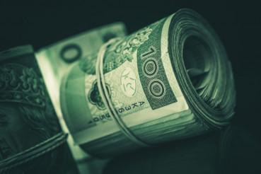 Rolled Cash Polish Zloty