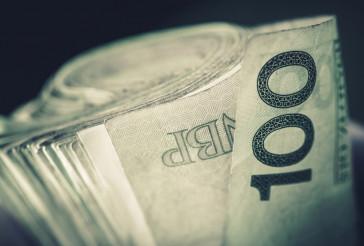 Rolled Polish Zloty Banknotes