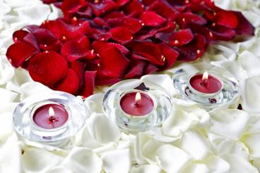 Rose Petals Decoration
