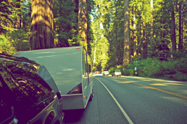 RV in Redwood Forest