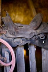 Saddle in Barn