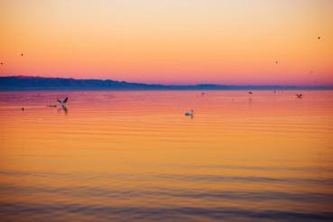 Salton Sea Vista at Sunset