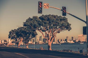 San Diego Bay and Skyline