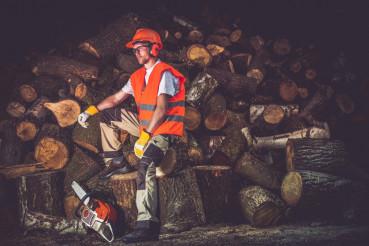 Satisfied Lumber Worker