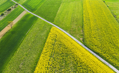 Scenic Aerial View of Countryside Farmlands