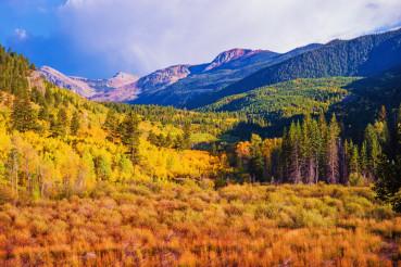 Scenic Aspen Lanscape