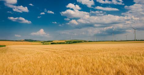 Scenic Countryside Landscape