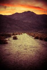 Scenic Desert Trail at Sunset