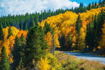Scenic Fall Colorado Road