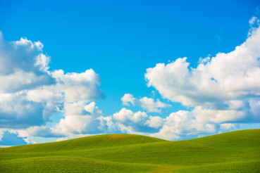 Scenic Meadow Background