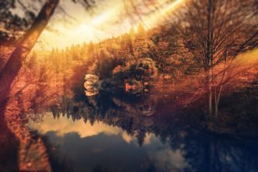 Scenic Park Sunset
