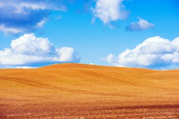 Scenic Stubble Farmland