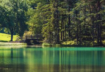 Scenic Turquoise Lake