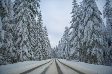 Scenic Winter Road