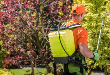 Seasonal Insecticide Work